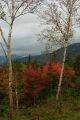 Color along the Kancamagus