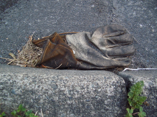 work glove with suede cuff in the gutter