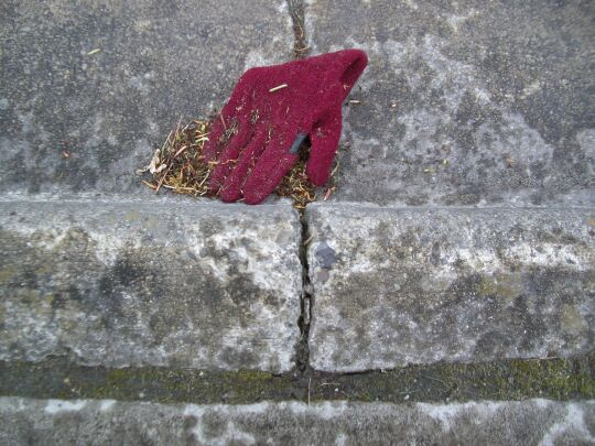 glove in a gutter