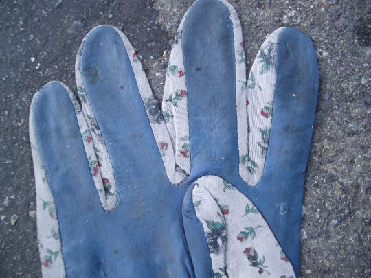 four fingers and the folded-in thumb of a cheap garden glove