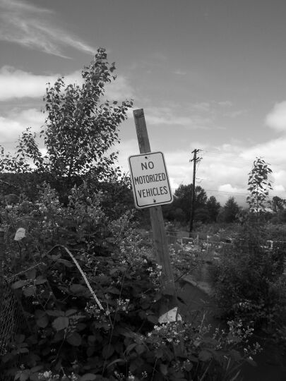 sign on Pickering Trail