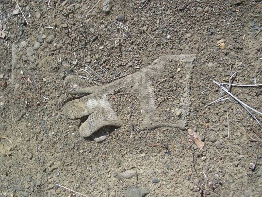 knit glove nearly embedded in sandy soil