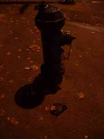 glove and fire hydrant by streetlight