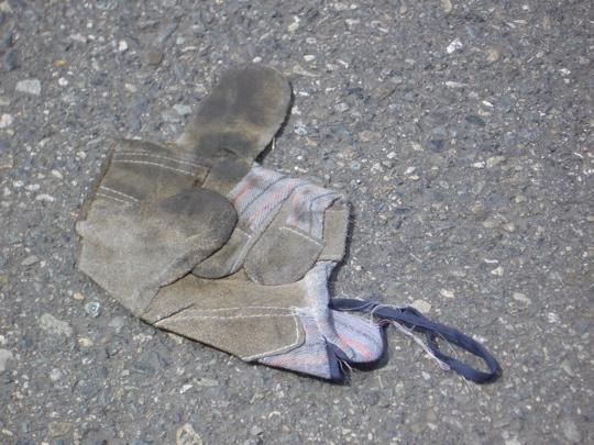 glove050626.jpg