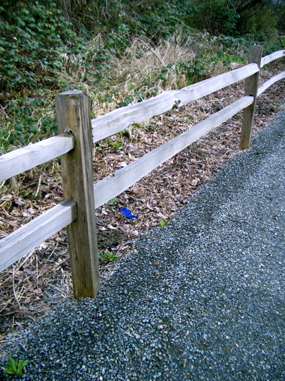 Appealing Curb Designs :: Fencing Austin Texas Landscape, Fencing