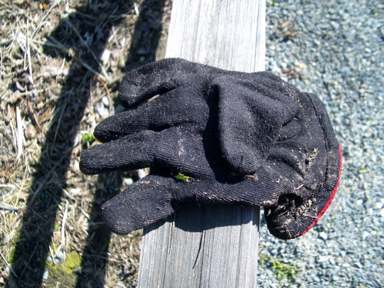 cloth glove on a fence rail