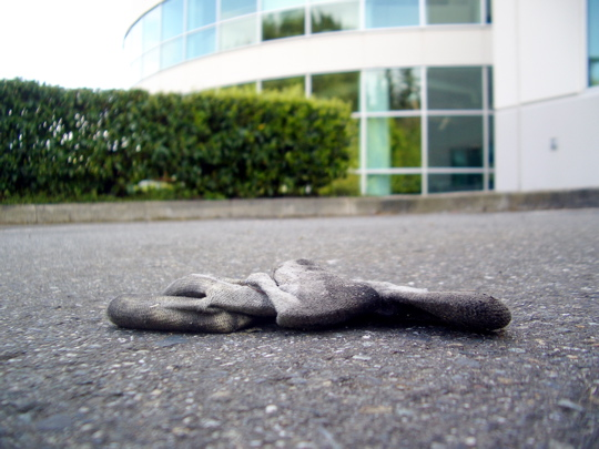 glove on the ground by a hedge by a building