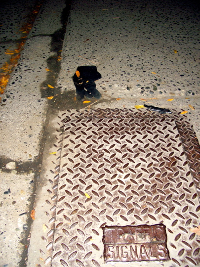 black glove in a gutter by a utility box