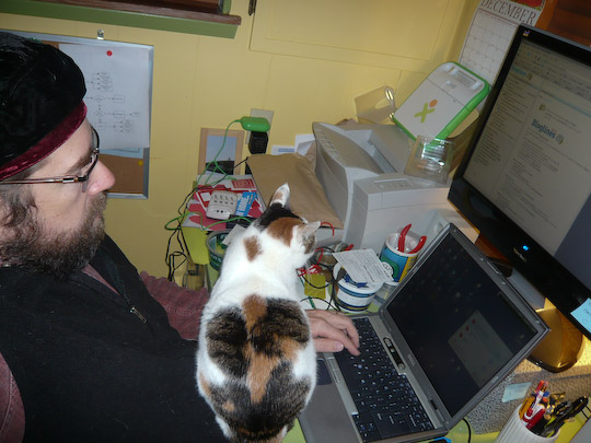 cat sitting between her human and his computer